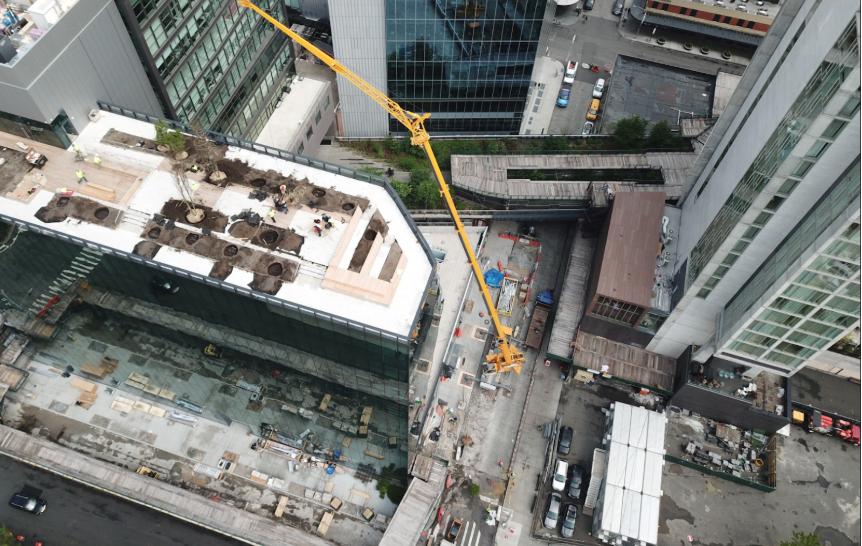 rooftop landscape management
